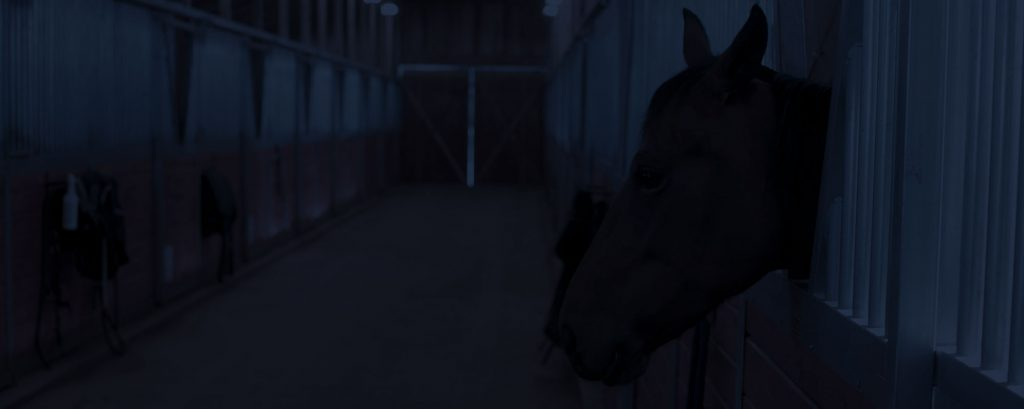 stables cctv