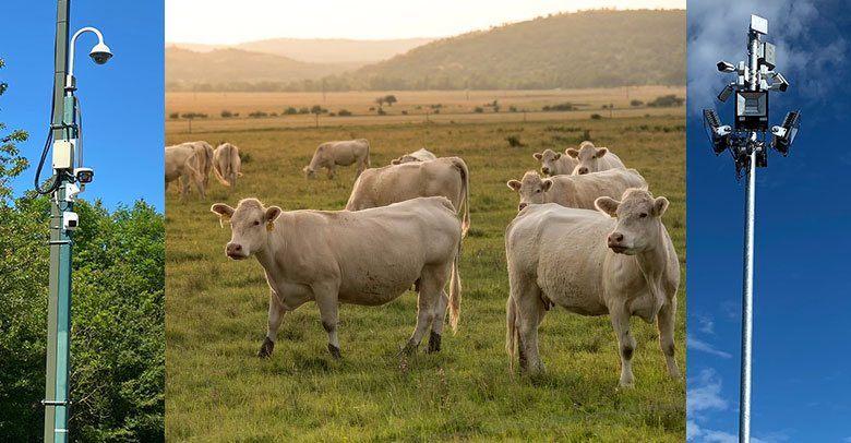 farm security cctv